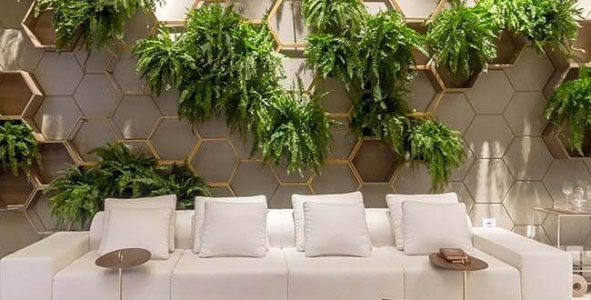 Jardim vertical é ideal para tornar mais atrativo e cheio de vida os ambientes pequenos